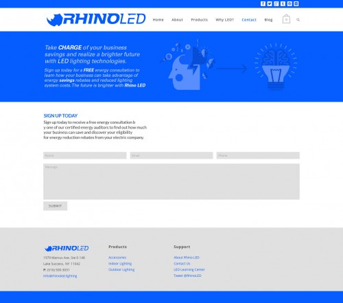 Rhino-LED_consultation